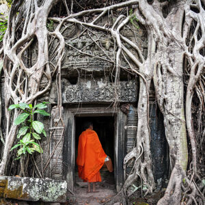 Cambodia - Monk in Angkor Wat Cambodia. Ta Prohm Khmer ancient Buddhist temple in jungle forest.
