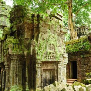 Cambodia - Ta Prohm Temple, Angkor, Cambodia 2
