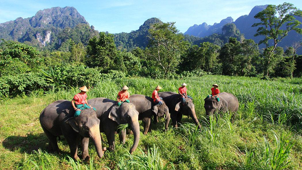 Elephant Hills – Thailand | Trip Connoisseurs
