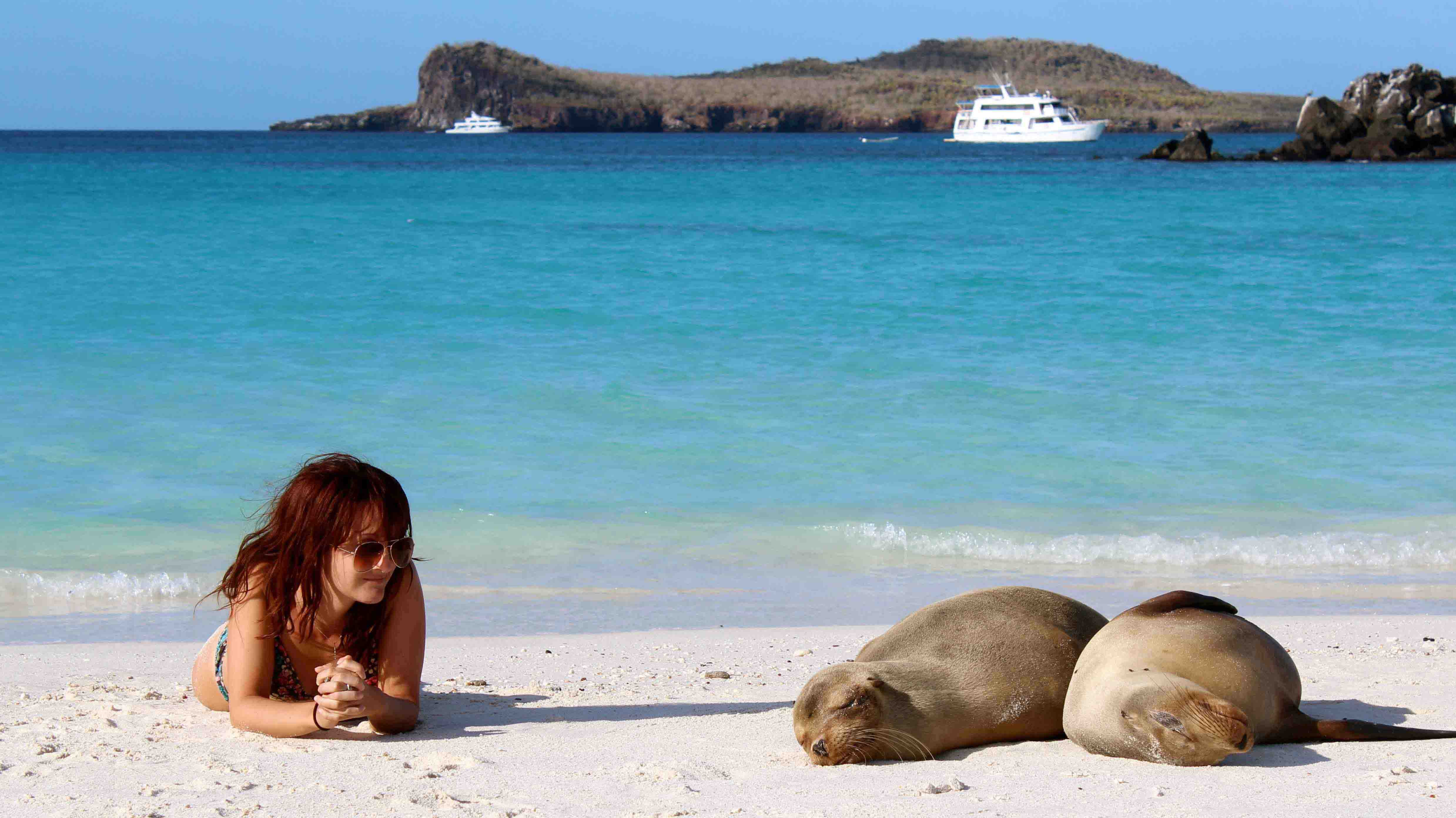 Natural Wonders Of Gal 225 Pagos Islands Trip Connoisseurs