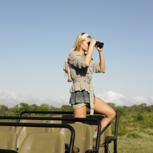 Safari & Wildlife
