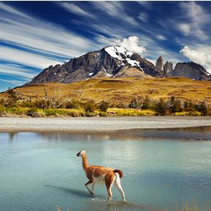 Chile | Argentina | Patagonia
